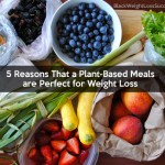 5 Reasons That a Plant-Based Meals are Perfect for Weight Loss
